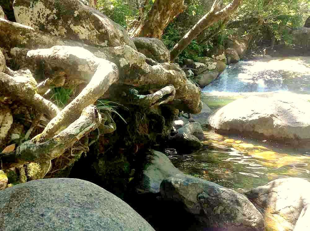 new-australian-dream-josephine-falls