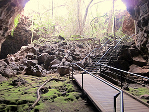 Living The New Australian Dream - Undara Lava Tube5