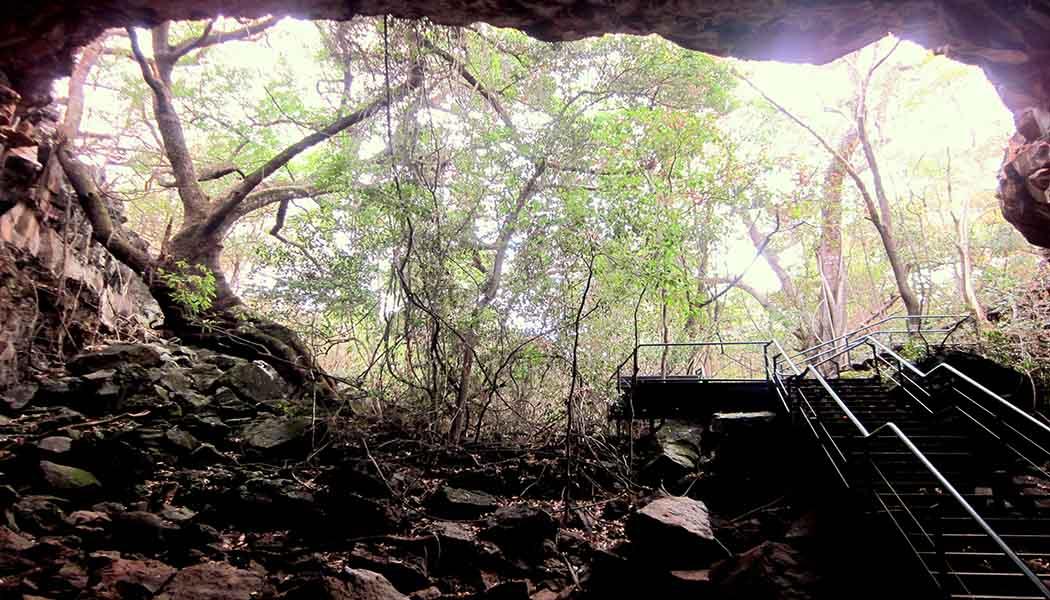 Living The New Australian Dream - Undara Lava Tubes
