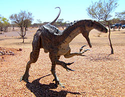 Living The New Australian Dream - Australovenator Wintonesis